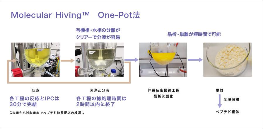 Molecular Hibing™ One-Pot法